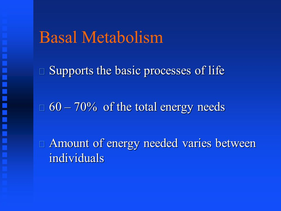 Basal Metabolism Supports the basic processes of life