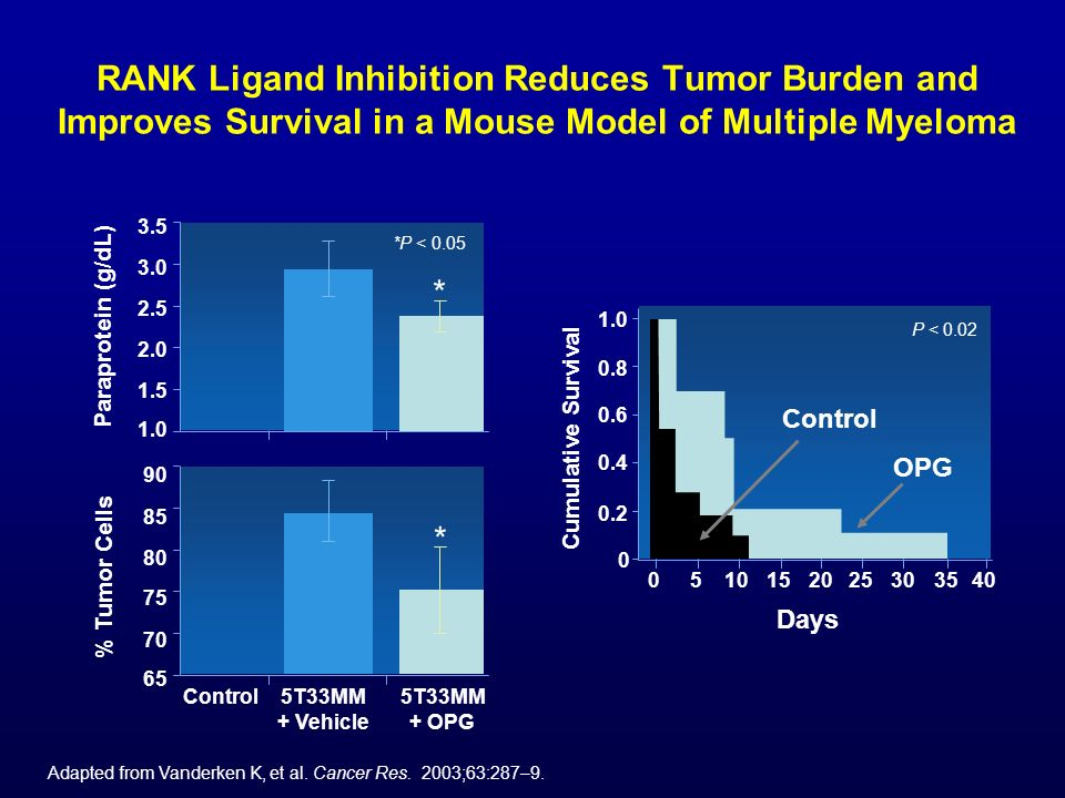 RANK Ligand Inhibition Reduces Tumor Burden and Improves Survival in a Mouse Model of Multiple Myeloma