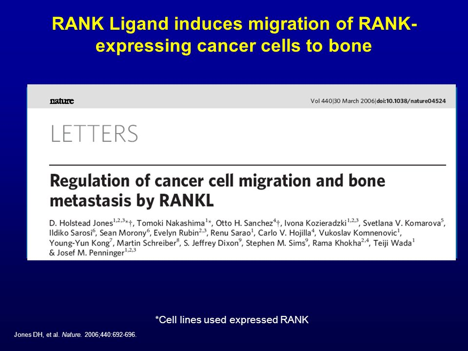 RANK Ligand induces migration of RANK-expressing cancer cells to bone