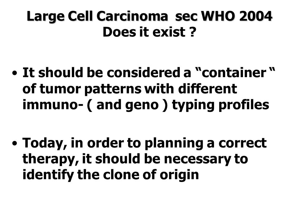 Large Cell Carcinoma sec WHO 2004 Does it exist