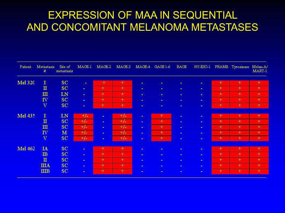 EXPRESSION OF MAA IN SEQUENTIAL AND CONCOMITANT MELANOMA METASTASES