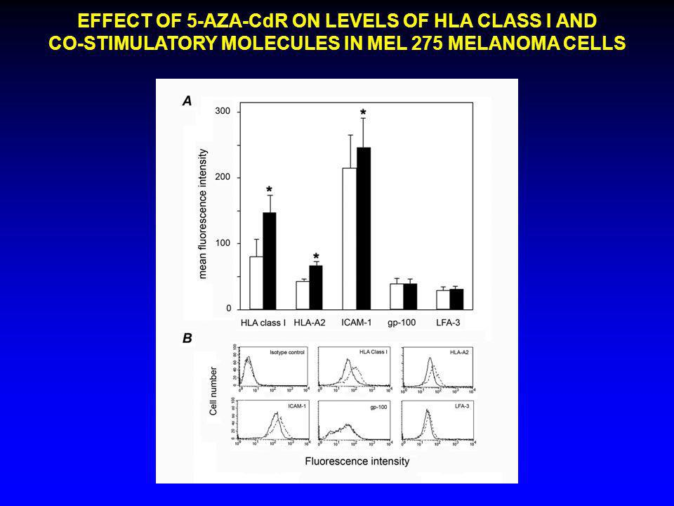 EFFECT OF 5-AZA-CdR ON LEVELS OF HLA CLASS I AND