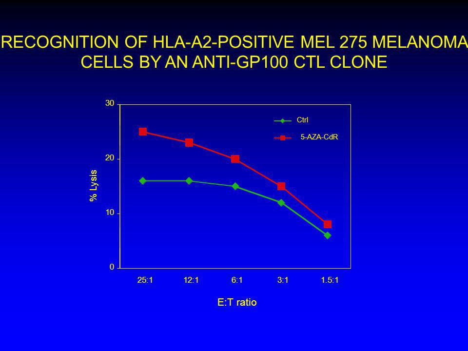 RECOGNITION OF HLA-A2-POSITIVE MEL 275 MELANOMA CELLS BY AN ANTI-GP100 CTL CLONE