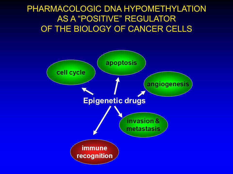 PHARMACOLOGIC DNA HYPOMETHYLATION AS A POSITIVE REGULATOR