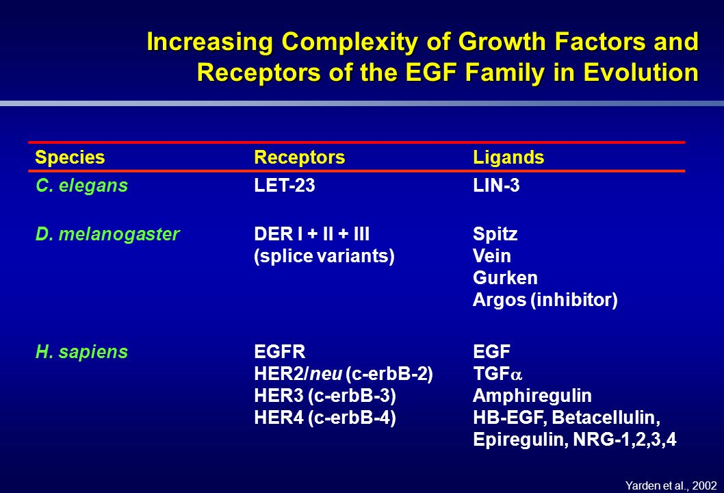Increasing Complexity of Growth Factors and Receptors of the EGF Family in Evolution