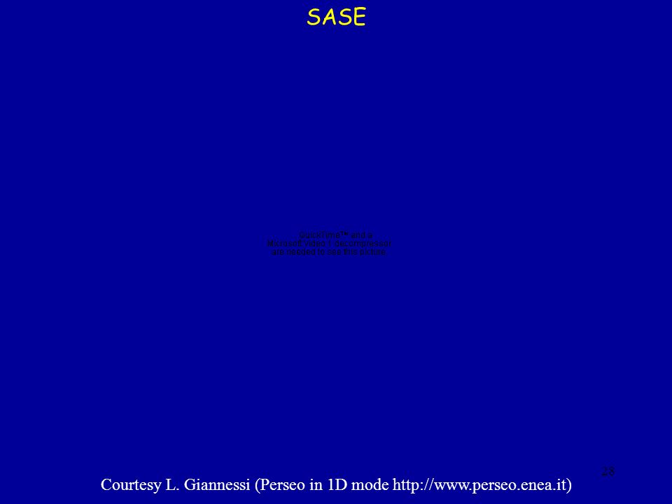 SASE Courtesy L. Giannessi (Perseo in 1D mode http://www.perseo.enea.it) prova