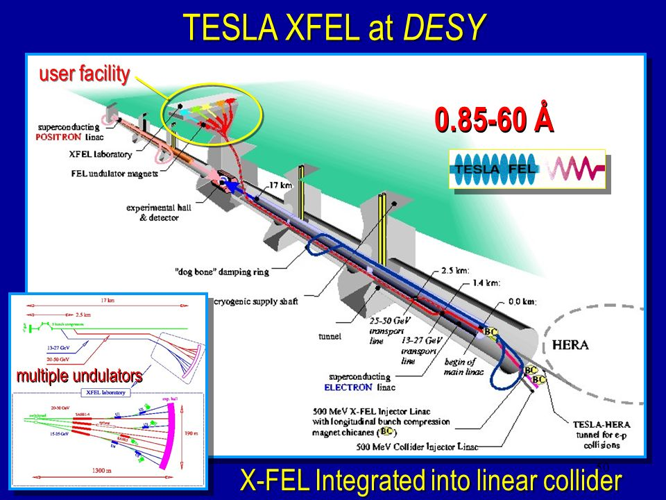 TESLA XFEL at DESY 0.85-60 Å X-FEL Integrated into linear collider