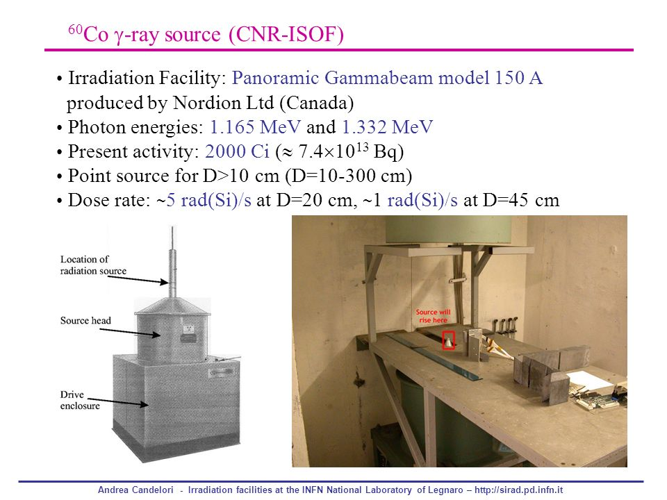 60Co -ray source (CNR-ISOF)