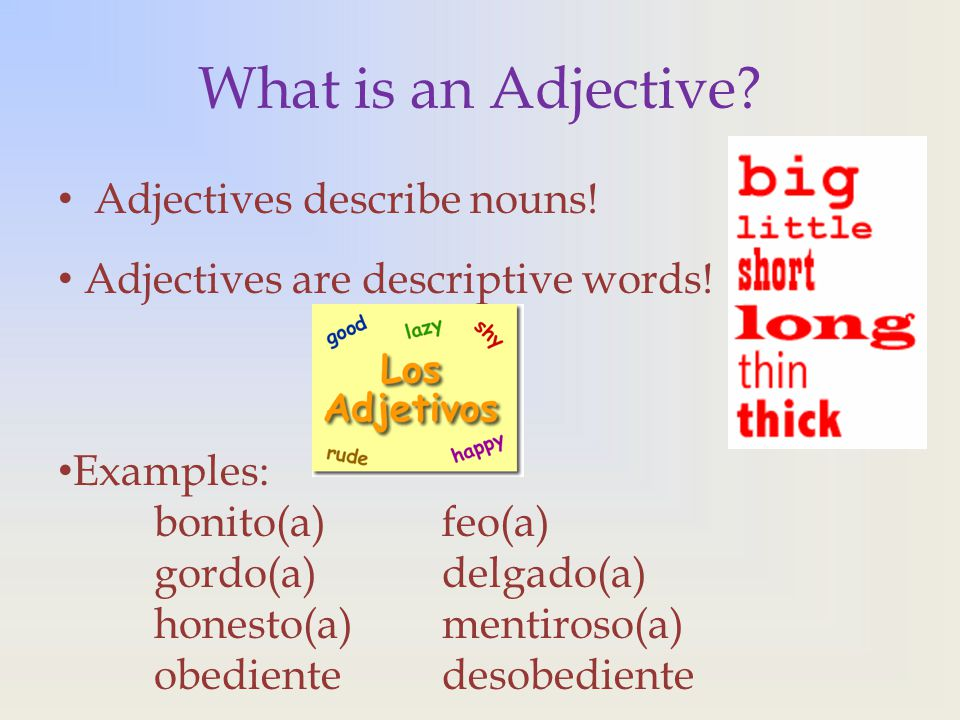 Adjective Agreement In Spanish Ppt Download