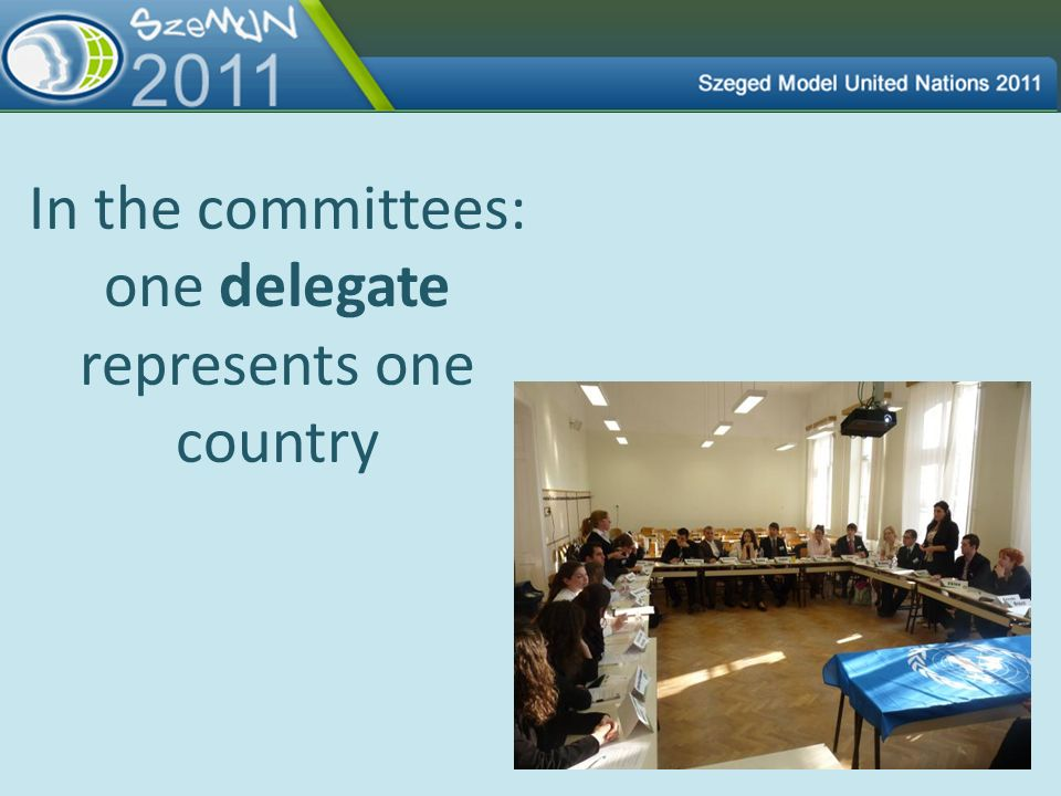In the committees: one delegate represents one country