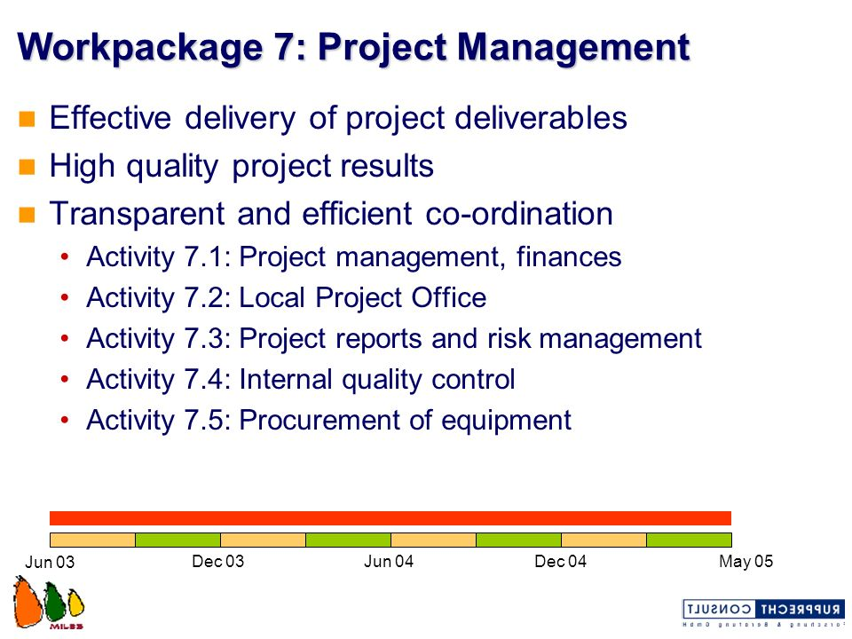 Workpackage 7: Project Management
