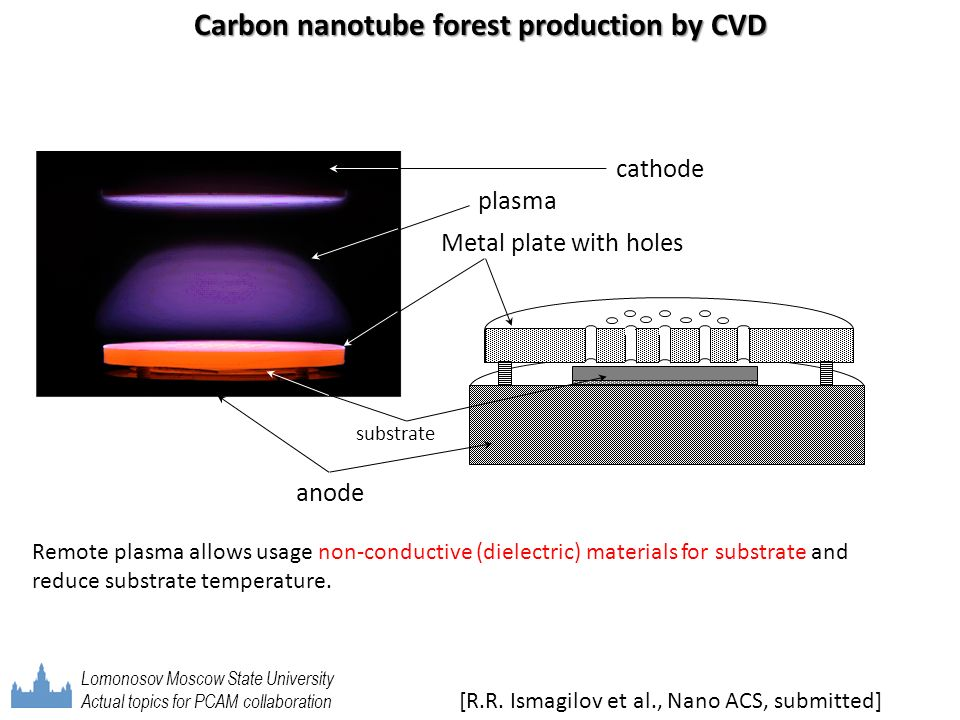 Carbon nanotube forest production by CVD