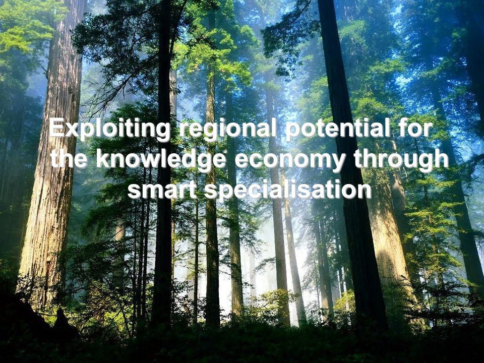Exploiting regional potential for the knowledge economy through smart specialisation