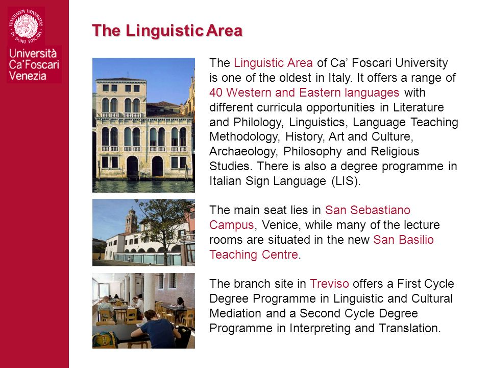 The Linguistic Area