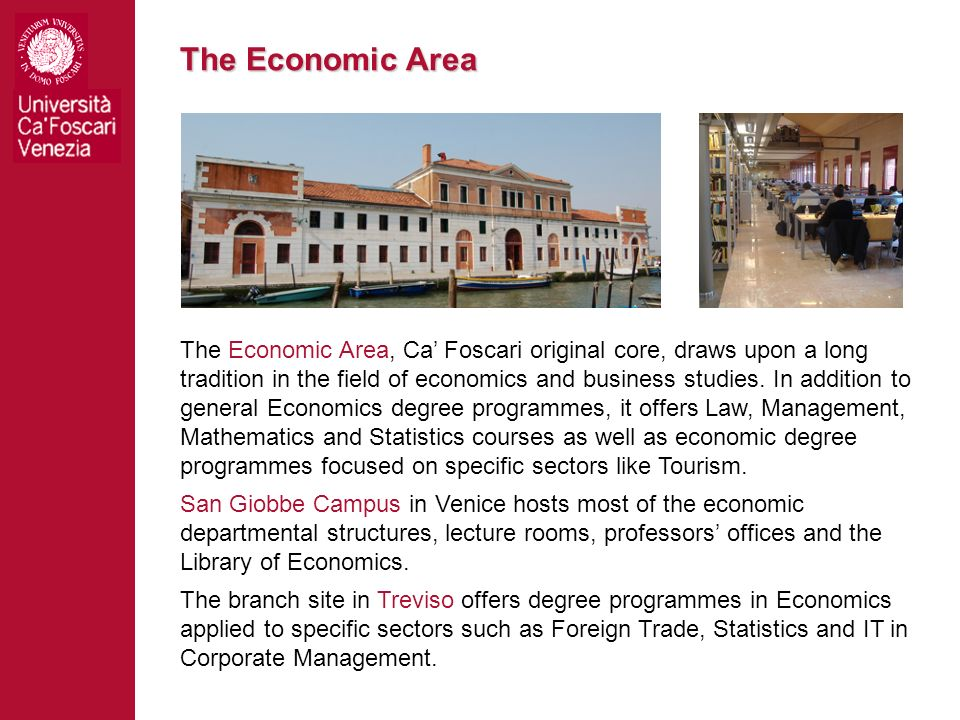 The Economic Area