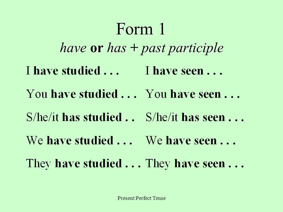 Form 1 have or has + past participle
