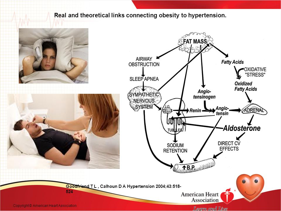 Real and theoretical links connecting obesity to hypertension.
