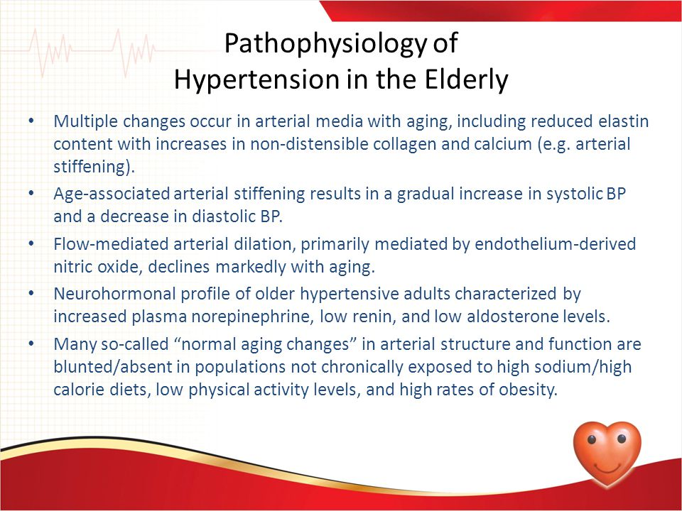 Pathophysiology of Hypertension in the Elderly