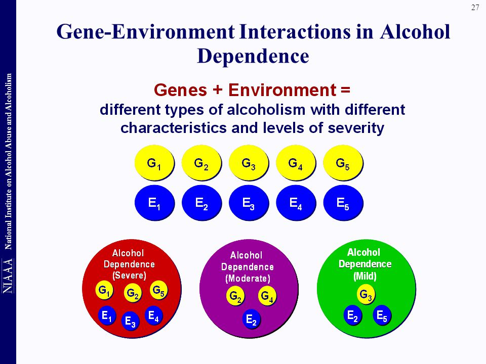 Gene-Environment Interactions in Alcohol Dependence
