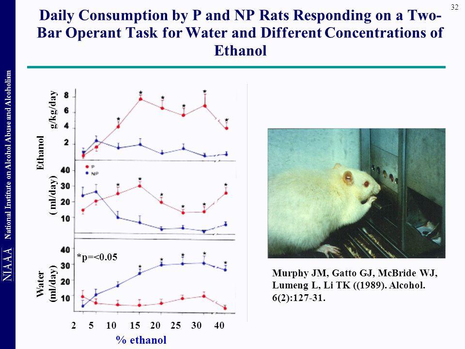 Daily Consumption by P and NP Rats Responding on a Two-Bar Operant Task for Water and Different Concentrations of Ethanol