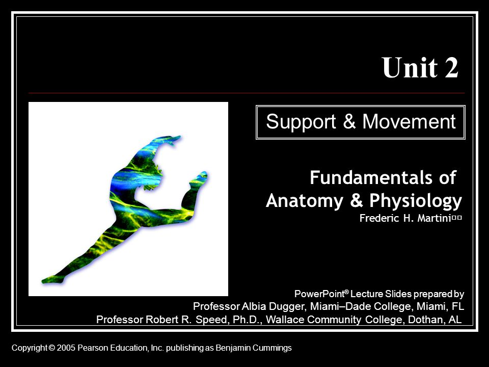 Unit 2 Support & Movement Fundamentals of Anatomy & Physiology - ppt ...