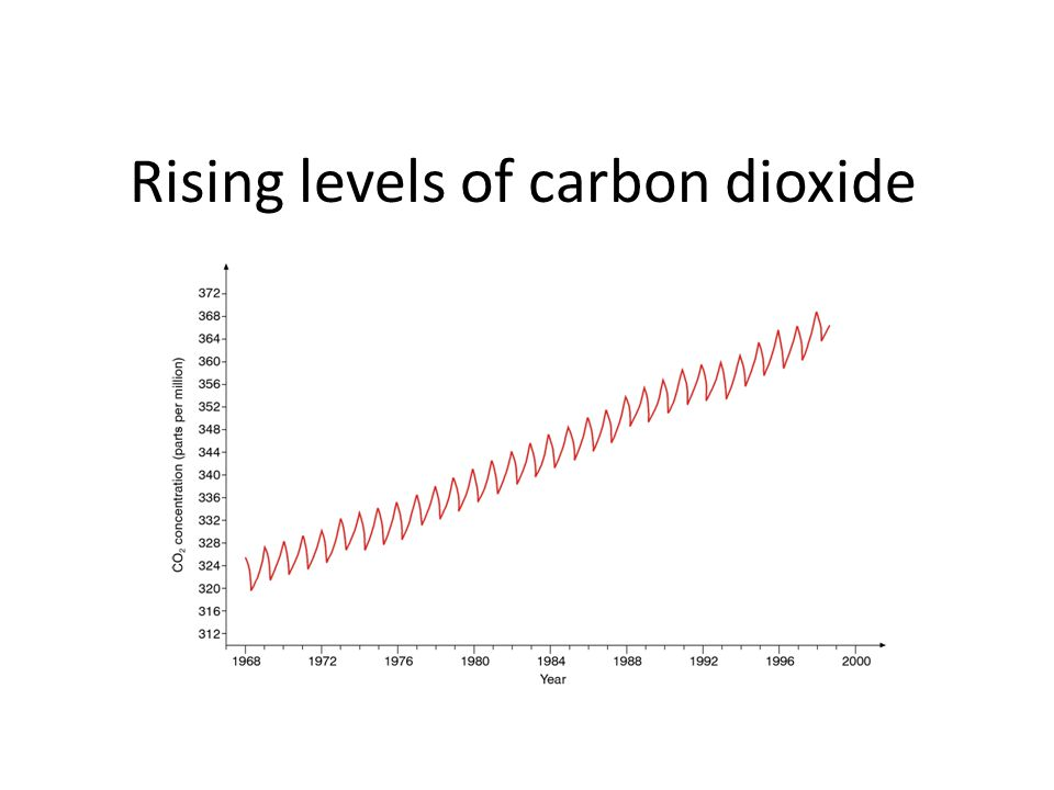 Rising levels of carbon dioxide