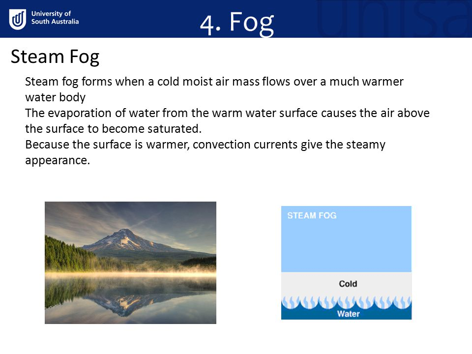 4. Fog Steam Fog. Steam fog forms when a cold moist air mass flows over a much warmer water body.