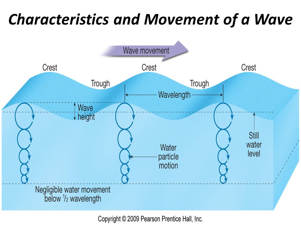 Diagrams Of Wave Movement - Trusted Wiring Diagram •