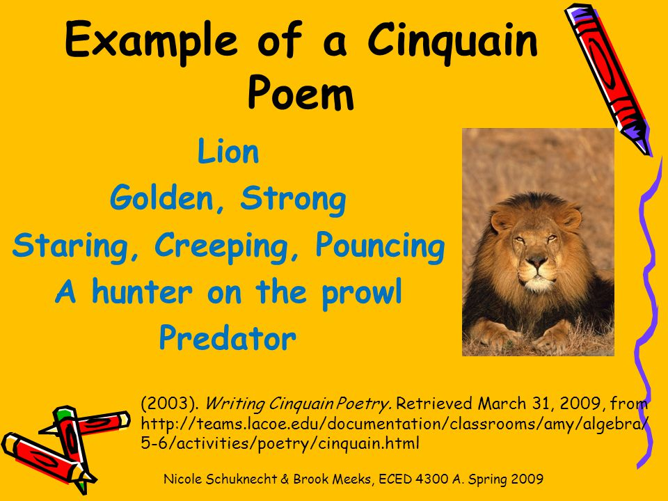 Zoo cinquain poems.