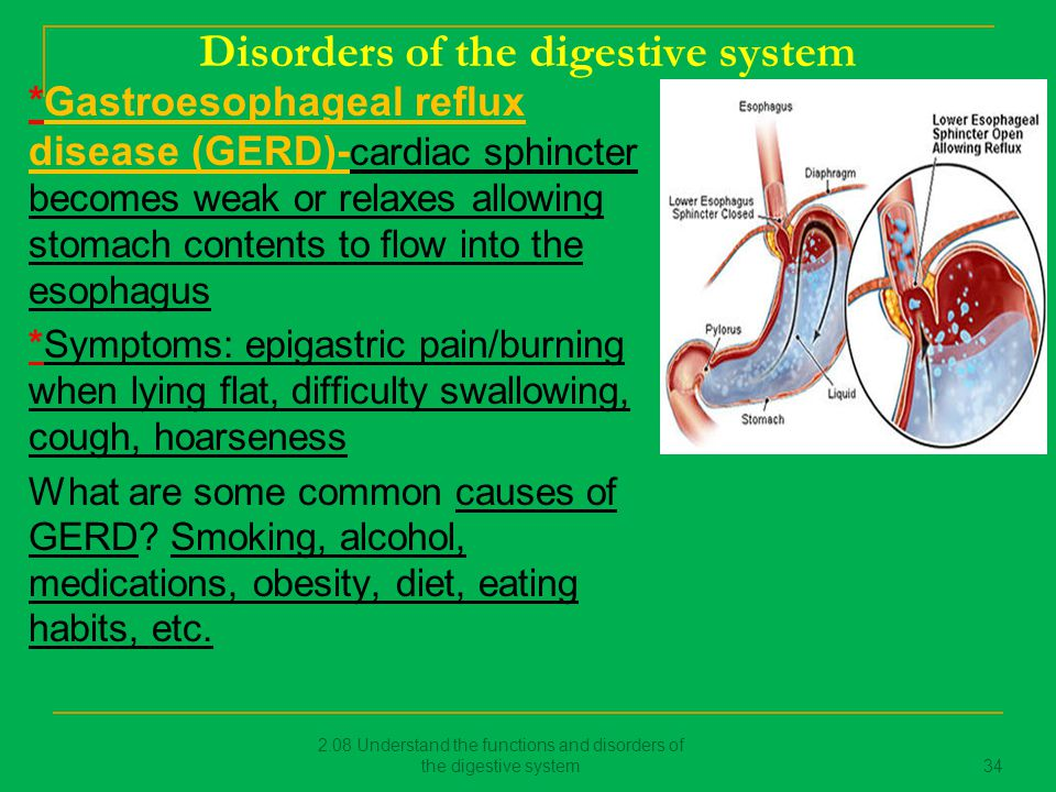 an overview of the digestive disorders and the amoebic dysentry Amoebic dysentery is regarded as one of the most prevalent parasitic disorders dysentery may result in fatigue and weakness for a considerable period patients experience extreme weakness for a prolonged time, especially they are of old age, have poor nutrition or suffer from other diseases.