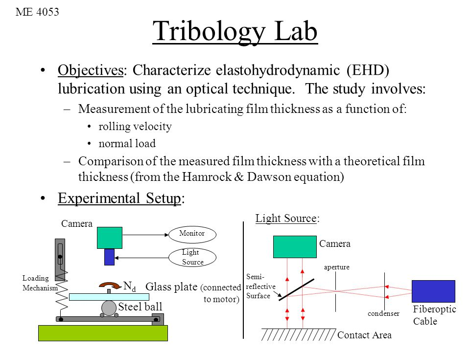 Tribology Lecture II Elastohydrodynamic Lubrication - ppt