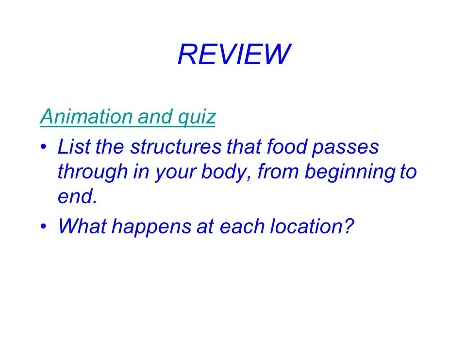 REVIEW Animation and quiz