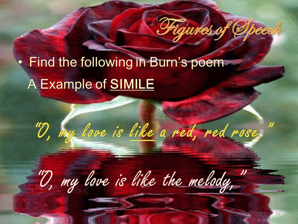 A Red Red Rose By Robert Burn Pg 530 Unit Ppt Video Online
