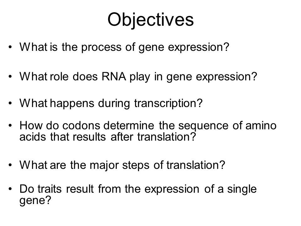 Objectives What is the process of gene expression