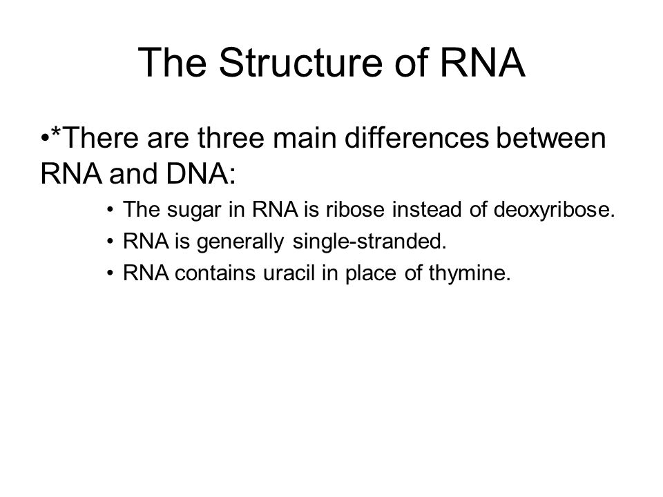 The Structure of RNA *There are three main differences between RNA and DNA: The sugar in RNA is ribose instead of deoxyribose.