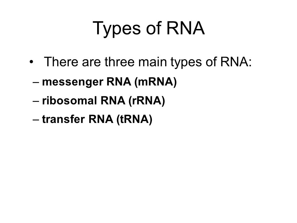 Types of RNA There are three main types of RNA: messenger RNA (mRNA)