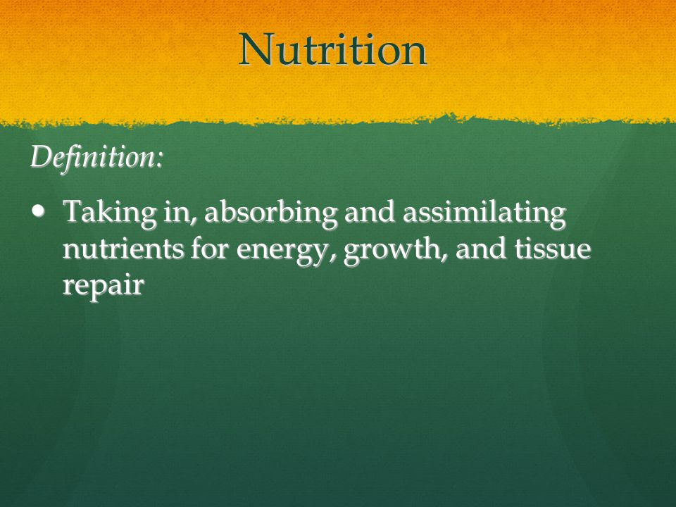 First Five Describe The Differences Between Digestion And