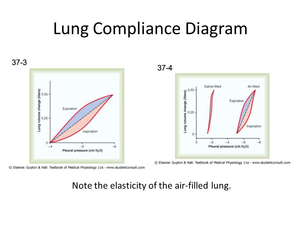 Respiration Breathing Mechanics And Lung Function Ppt Video
