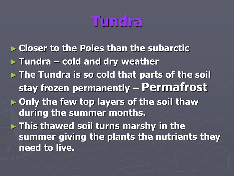 Tundra Closer to the Poles than the subarctic