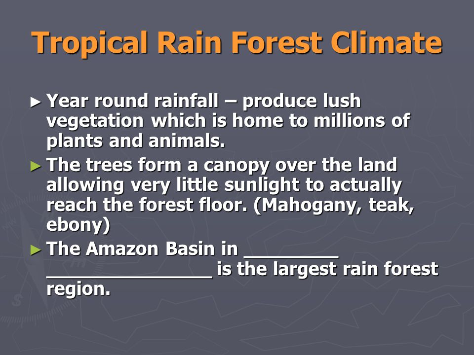 Tropical Rain Forest Climate