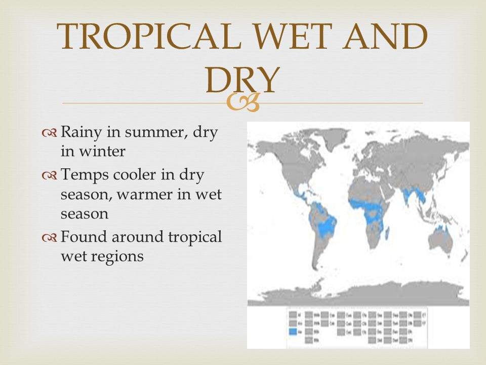 TROPICAL WET AND DRY Rainy in summer, dry in winter