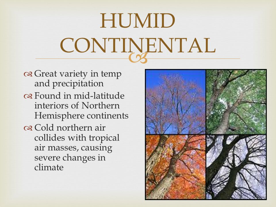 HUMID CONTINENTAL Great variety in temp and precipitation