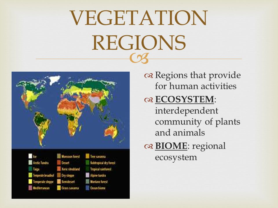 VEGETATION REGIONS Regions that provide for human activities