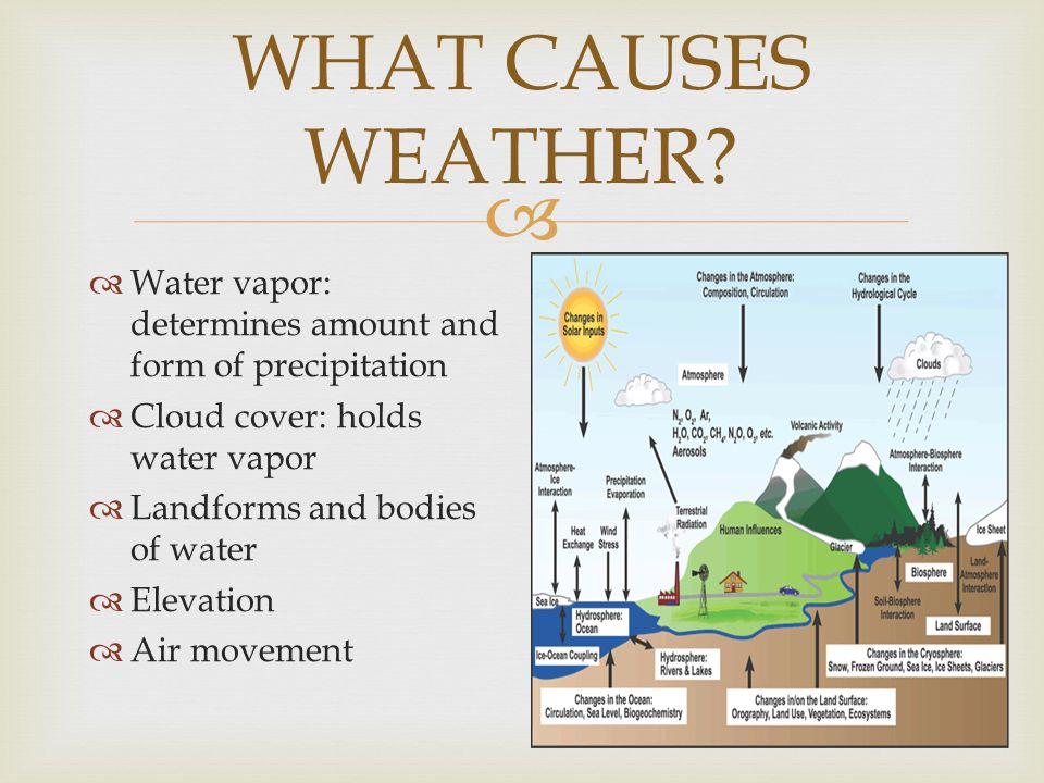 WHAT CAUSES WEATHER Water vapor: determines amount and form of precipitation. Cloud cover: holds water vapor.