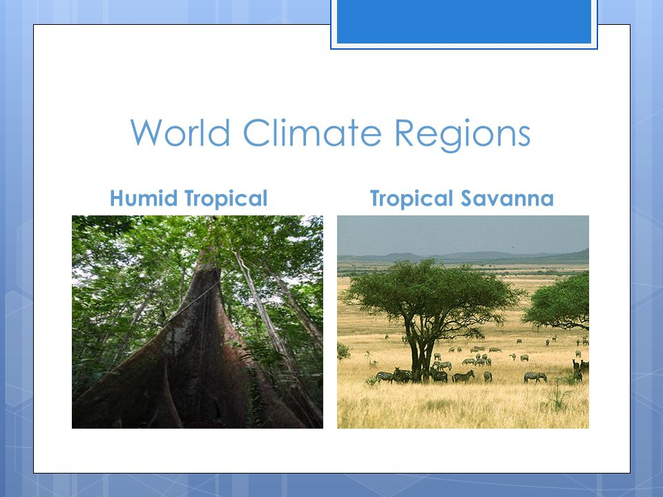World Climate Regions Humid Tropical Tropical Savanna