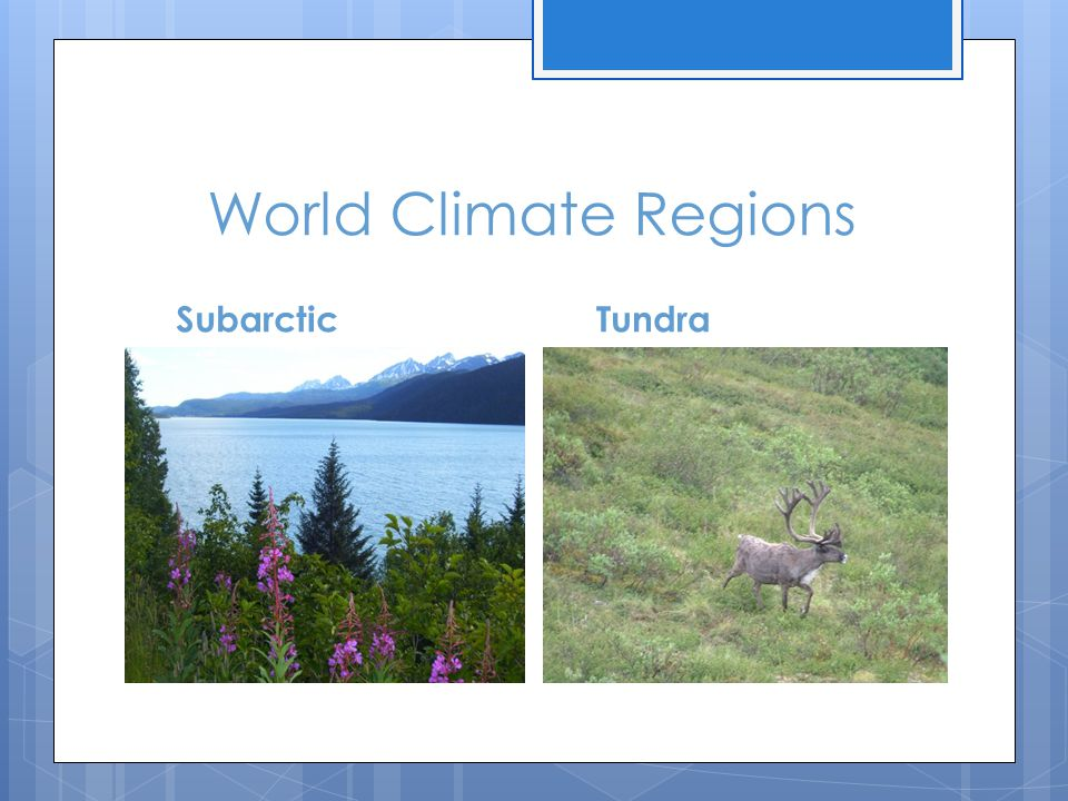 World Climate Regions Subarctic Tundra