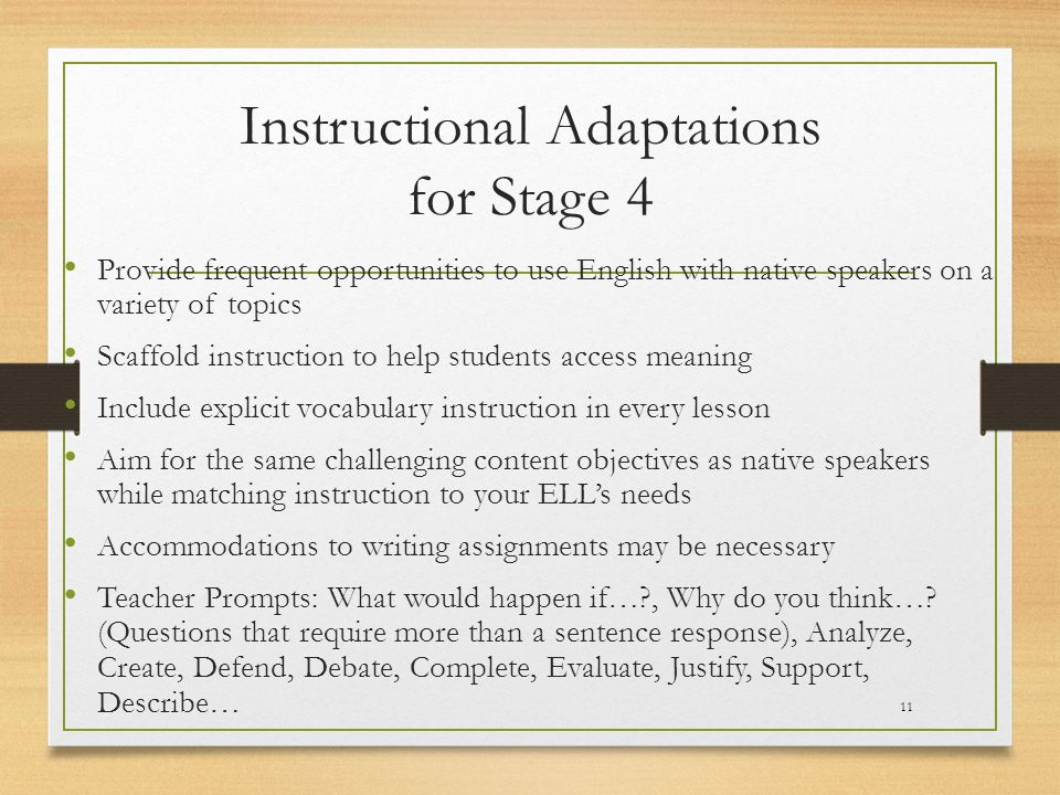 Instructional Adaptations for Stage 4