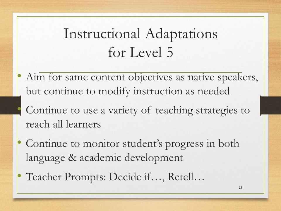 Instructional Adaptations for Level 5