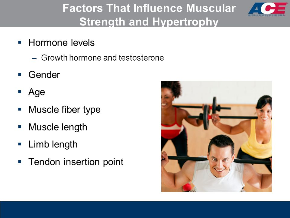 ace personal trainer manual 4th edition chapter 10 ppt video rh slideplayer com Ace Personal Trainer Body Ace Fitness