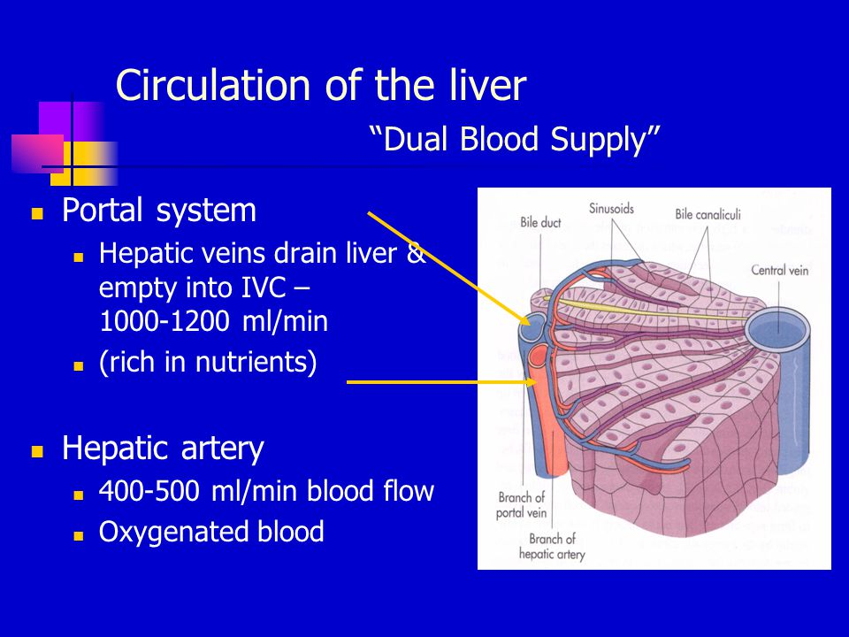Management Of Patients With Hepaticbiliary Dysfunction Ppt Video
